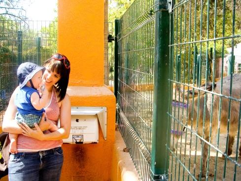 Cruz Zoo 2